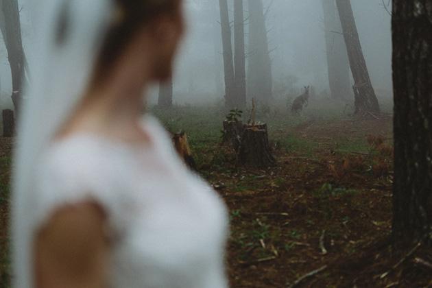 Allview-Escape-Blackheath-Wedding-24